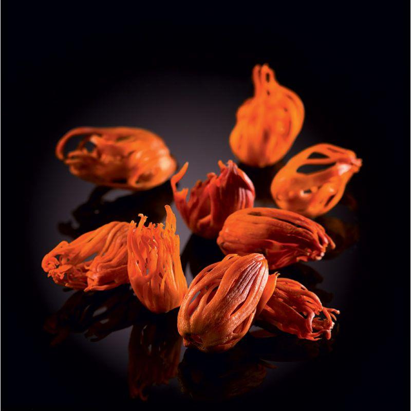 Tasmanian berries Tasmania Lanceolata