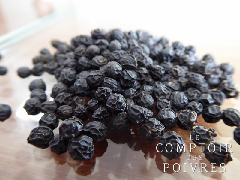 Poivre noir MALABAR MG1 du Kérala